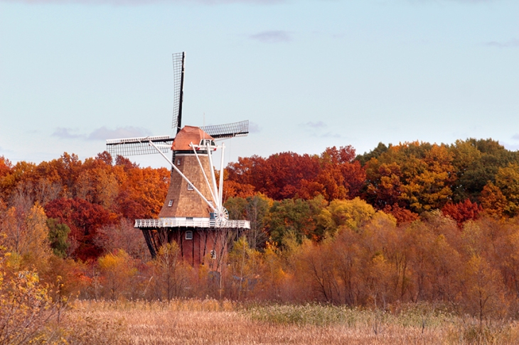 Windmill2013