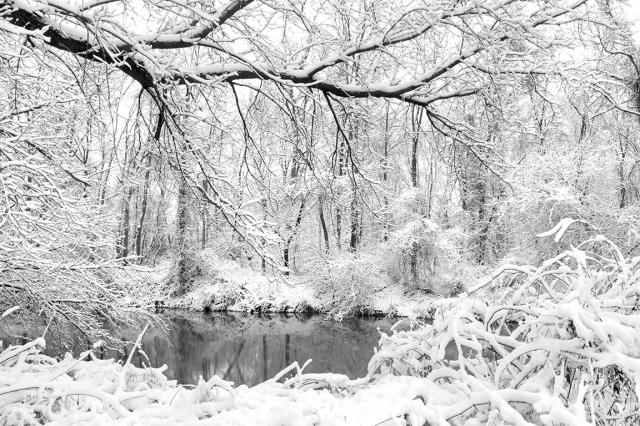 SnowCover