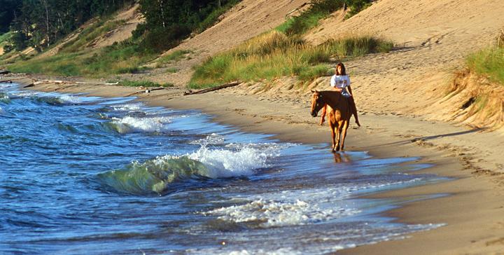 Beach_Horse
