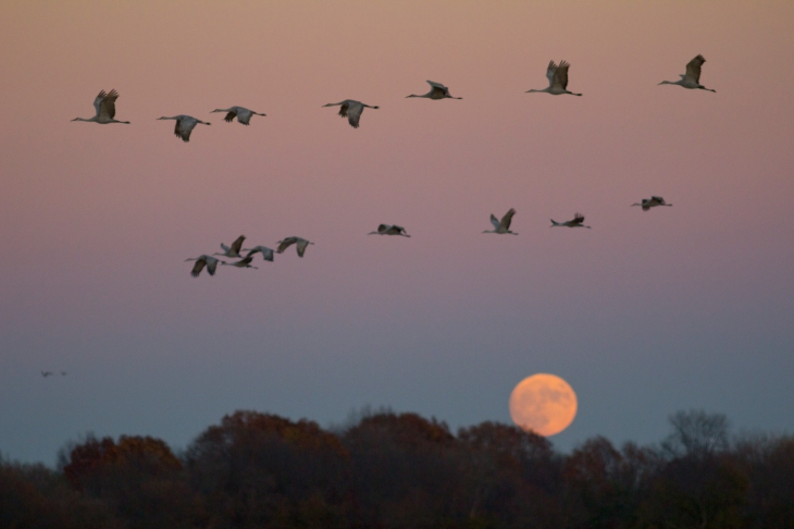 super_moon_flight